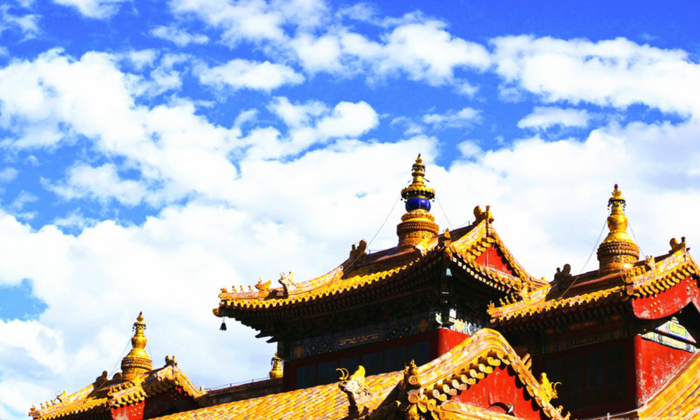 Confucius Temple, Lama Temple and Beijing Zoo Private One Day Tour